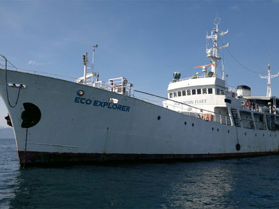 Sale the yacht Expedition Dive Vessel 46m «Eco Explorer»